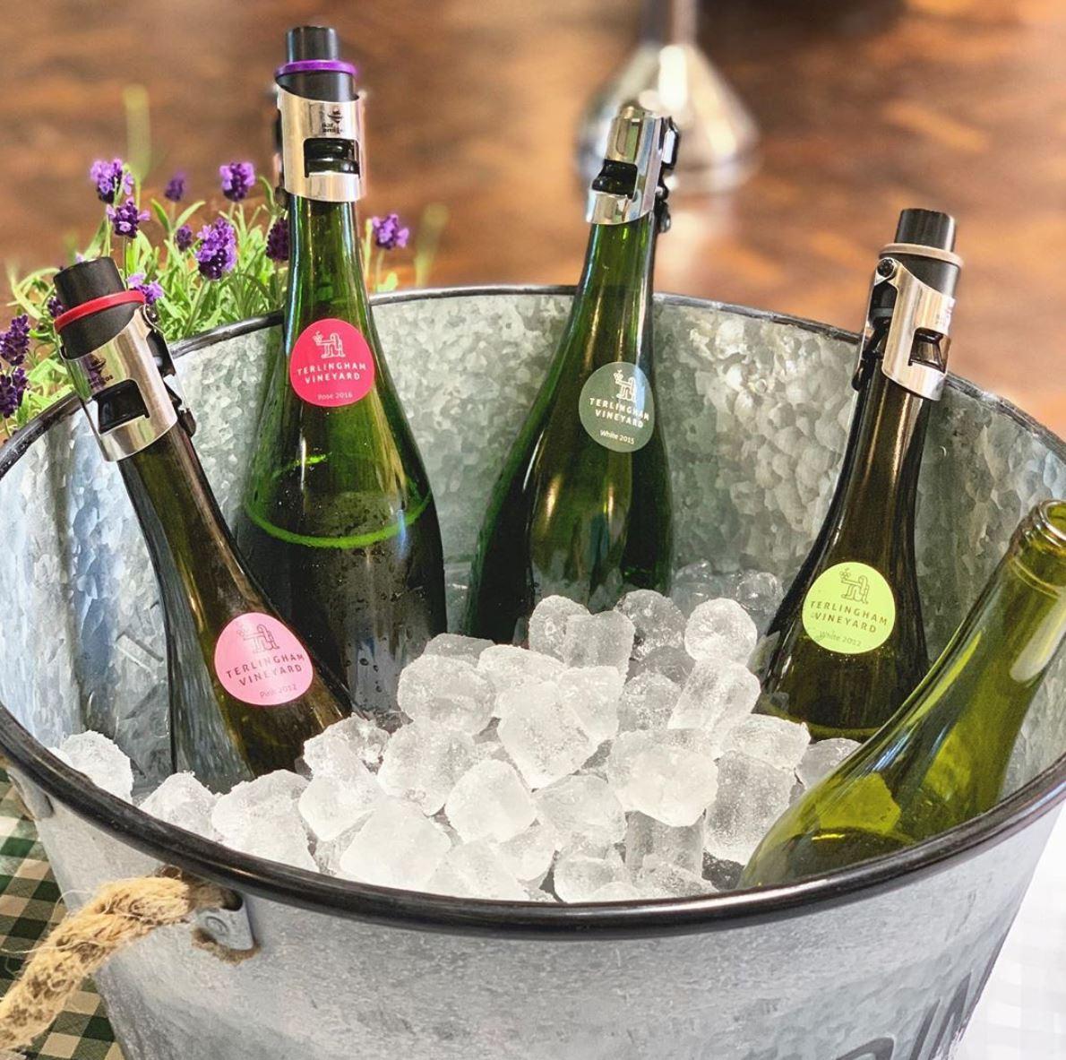 Bottles on ice Terlingham Vineyard