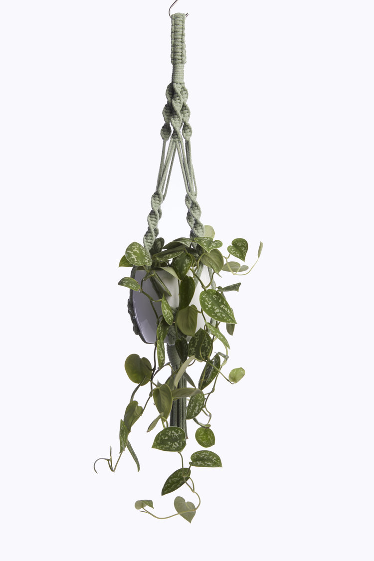 Heather Orr Eucalyptus Hanger