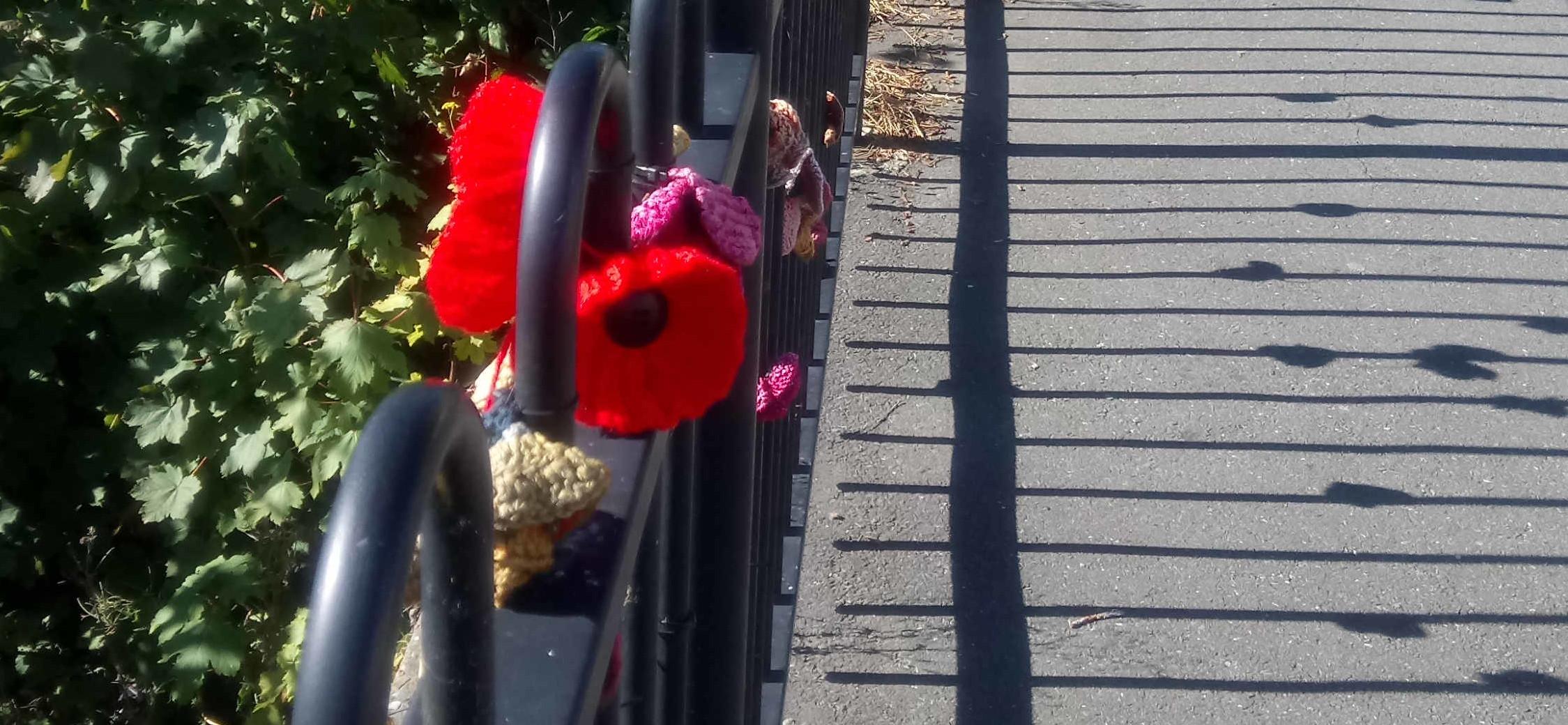 Poppies WW1