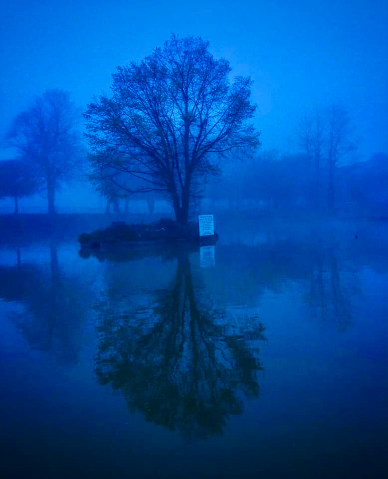 Pond at Radnor Park - Credit Lucy Buck