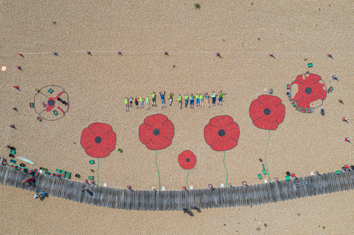 Poppies with people ECC