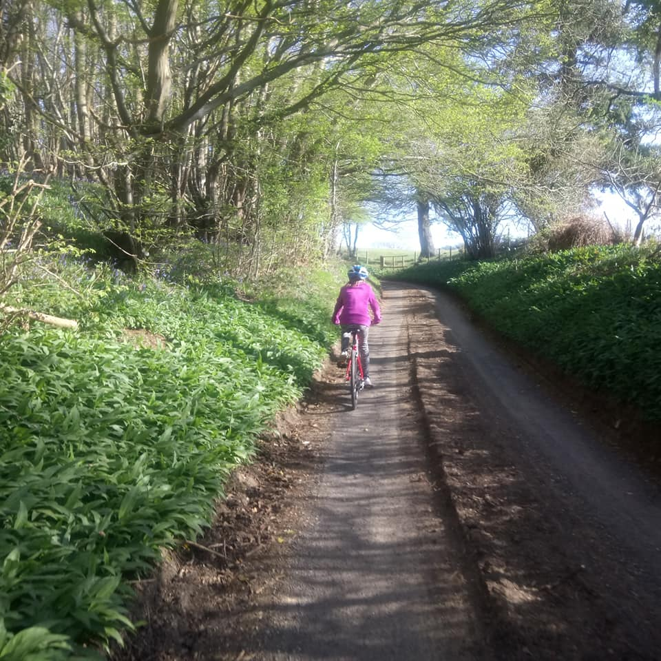 Cycle the country lanes