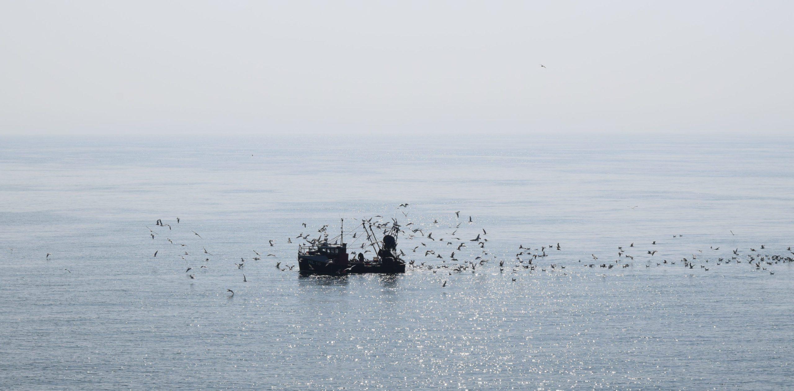Folkestone Trawlers