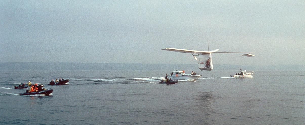 Albatross flying across the Channel