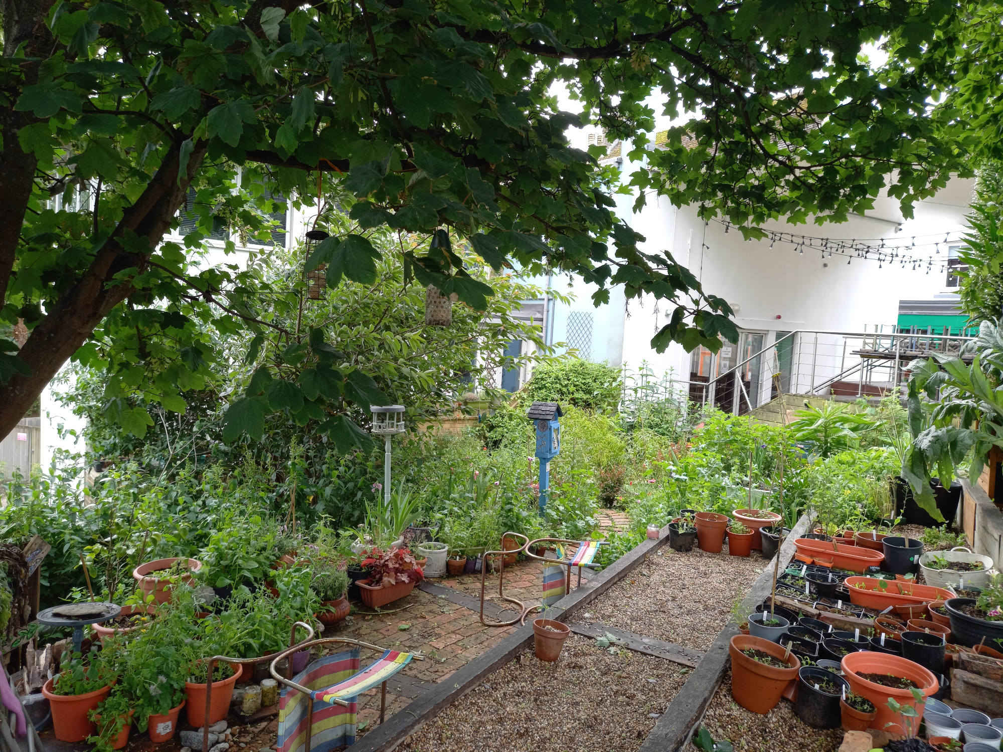 Payers Pocket Community Garden
