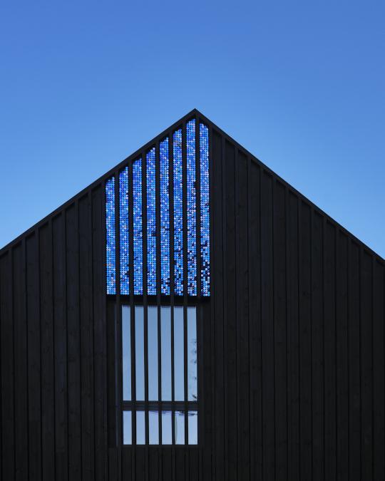 External Blue Shimmera