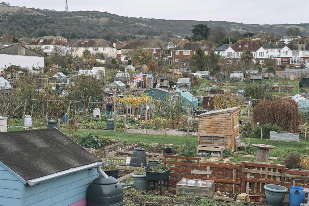 Folkestone Allotments
